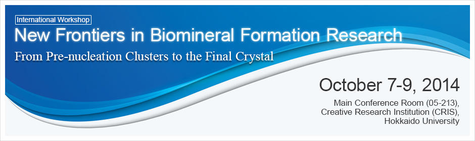 International Workshop, New Frontiers in Biomineral Formation Research, From Pre-nucleation Clusters to the Final Crystal